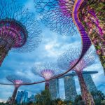 Overview of Singapore Corporate Tax and GST